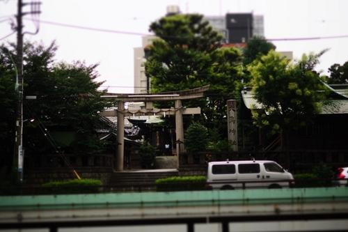 P8210072.jpg